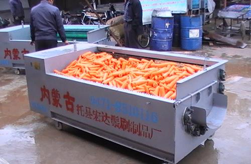 胡萝卜清洗机