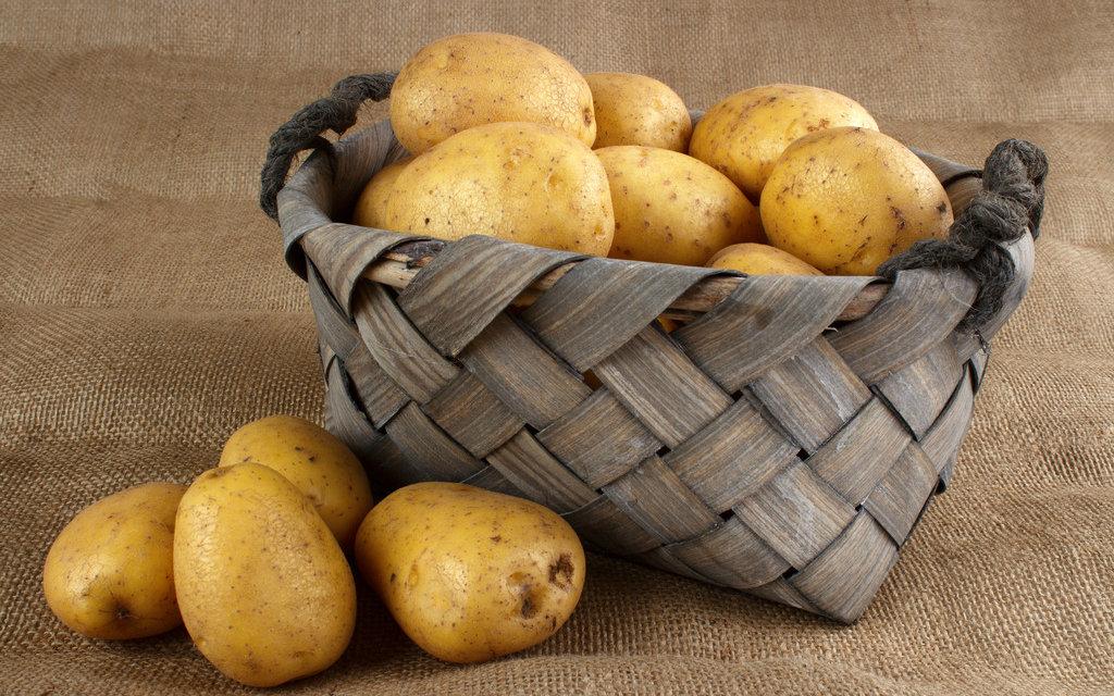 马铃薯清洗机